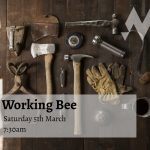 The next MPC Working Bee is on Saturday 5th March. Feel free to join anytime of the morning